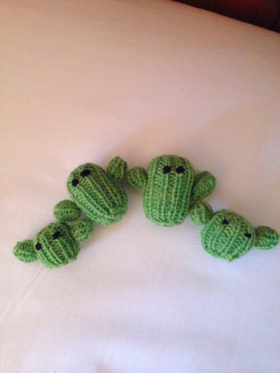 wee cacti